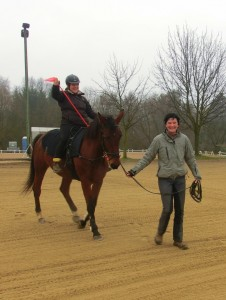 Gesundheitssport mit dem Pferd